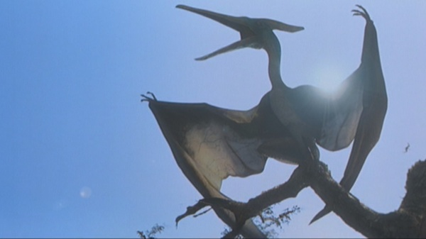 "Don't ever call this a ""pterodactyl"" or I swear I will find you."
